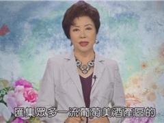 台湾纪录片:宁夏葡萄酒产区