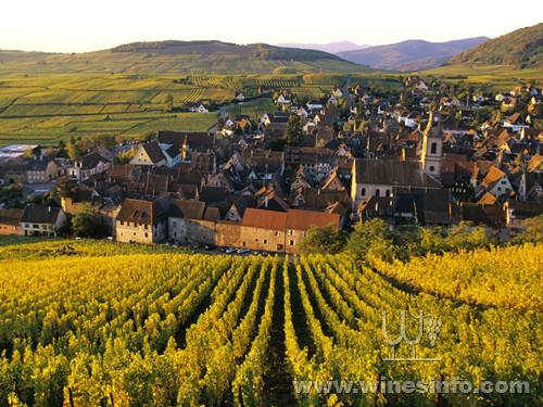 World___France_City_of_vineyards_in_Alsace__France_073426_-1024x768.jpg