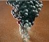 全球气候变暖正在迅速改变葡萄酒产业