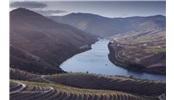 葡萄牙旅游 - 葡萄酒