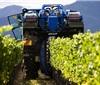 新西兰提升警戒级别 葡萄酒酿造或将停工