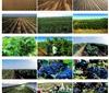 从银广夏股权变迁了解宁夏葡萄酒产区的历史