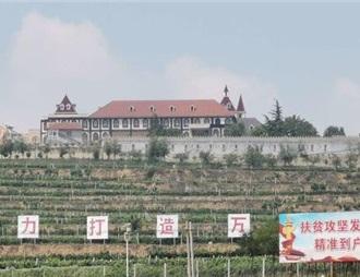 陕西:三原小葡萄串起扶贫大产业