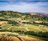意大利葡萄酒正在全速前进