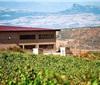 新疆怡然葡萄酒业12%股权将被转让