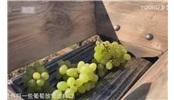國外牛人翻新葡萄破碎壓榨機