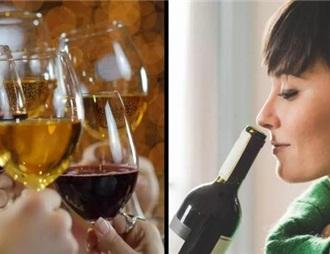 英國酒商發福利 免費品6瓶酒還能賺250英鎊