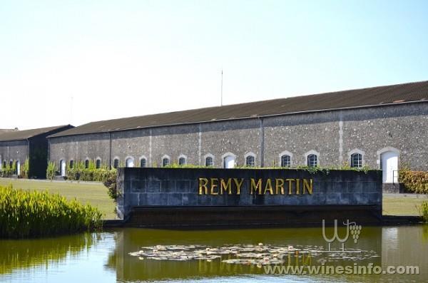 Remy-martin2.jpg