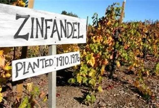 酒会  风情万种的美国葡萄酒
