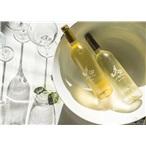 南非进口红酒天阶庄园天阶维欧尼干白葡萄酒