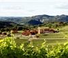 巴西的葡萄酒业在国际舞台上崭露头角