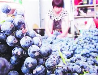 齊齊哈爾:市民不再熱衷自釀葡萄酒
