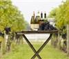调查显示40%消费者对葡萄和葡萄酒酿造感兴趣