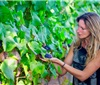 智利葡萄酒产业发展呈现八大新趋势