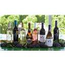 进口红酒代理加盟,全国招商,天阶庄园招商加盟