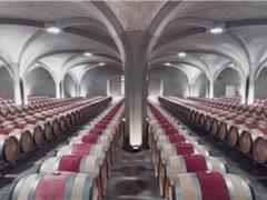 法国葡萄酒窖欣赏