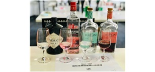 Gin 国际金酒品鉴师认证课程