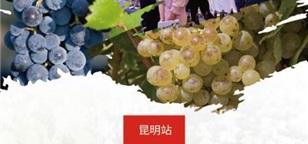 2020昆明站●罗纳河谷葡萄酒巡展