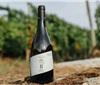 首款西班牙稀有本土葡萄品种酿造的葡萄酒诞生