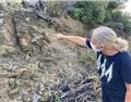 杰西斯·罗宾逊:片岩,我为卿狂!