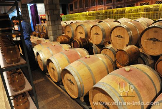 巴格斯酒庄地下酒窖盛满红酒的橡木桶