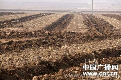 """""""   记者查到《葫芦岛日报》去年11月15号的一篇报道,称建昌县与河北"""