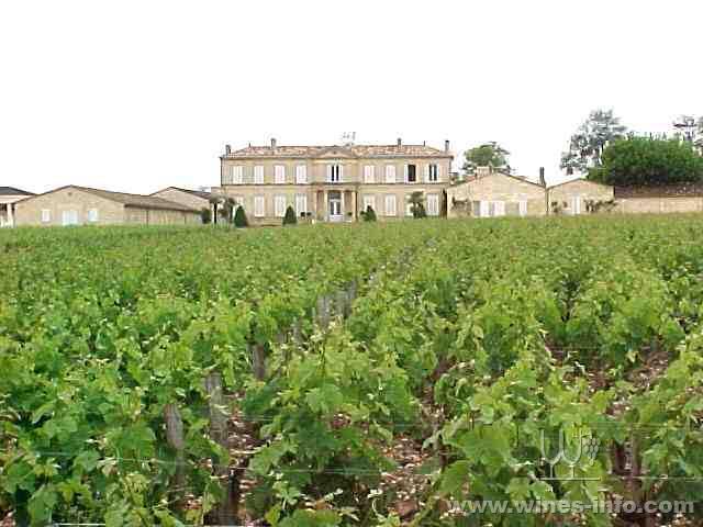 梅多克法定产区优雅的葡萄酒艺术