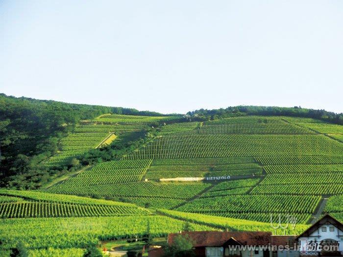 匈牙利,咏叹自由之诗的酒国:中国葡萄酒资讯网(www.