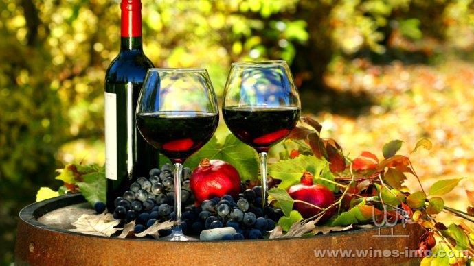 镇江美食联手中华美酒:中国葡萄酒资讯网大港美食的智利图片