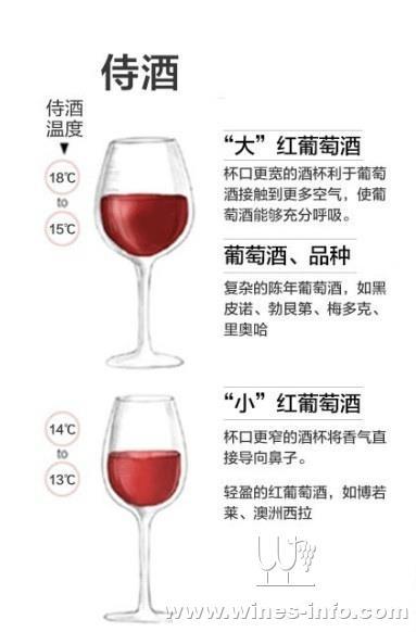 超简单品酒步骤图解