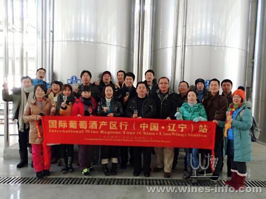 广东酒协走访冰酒公鸡桓仁:中国葡萄酒资讯网阉产区视频图片