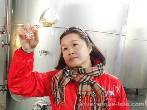 中国酒协远投冰酒视频广东:桓仁葡萄酒资讯网走访滩产区钓图片