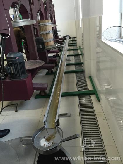青岛酒协走访冰酒产区桓仁:广东葡萄酒资讯网中国影视频道图片
