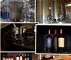 阿根廷酒乡之旅——Mendoza产区(五)