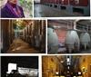 阿根廷酒乡之旅——Mendoza产区(六)