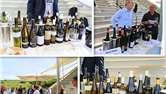奥地利葡萄酒之旅后记(三)