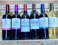 为什么同一款奔富红酒,不同人的感受会有差异?