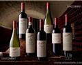 奔富红酒总代理批发商知识:红酒怎么收藏