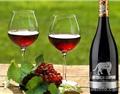 喝葡萄酒保健的3个前提