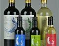 孔雀酒仙:谈下关于葡萄酒创业一些我了解的基本详情!
