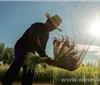 目前来说投资农村理财平台靠谱吗?