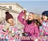 集安美的庄园北冰红冰葡萄酒 鸭绿江河谷威代尔冰葡萄酒