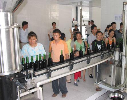 中国葡萄酒资讯网 手机版